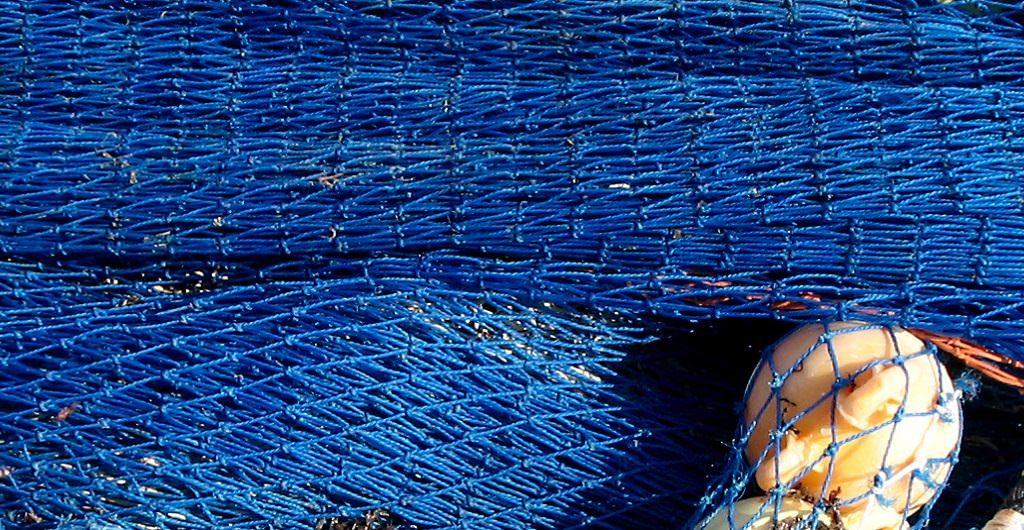 """Sabine Rupp hilft ihren Kunden mit Marketing, Führung & Co., deren Kunden """"einzufangen"""" - das Foto zeigt daher ein Fischernetz"""