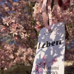 Bildergalerie Dankbarkeit Hanami 2020: Leben