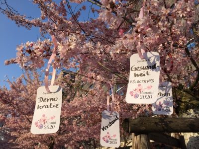Worte der Dankbarkeit zu Hanami 2020 in den Kirschbäumen an der Stadtbibliothek Köln